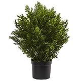 Nearly Natural 6880 2' Cedar...