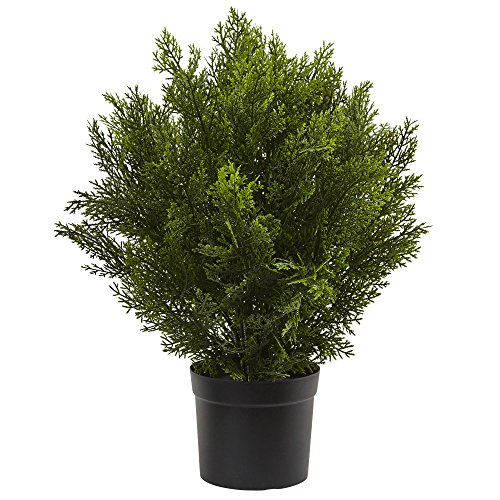 Nearly Natural 6880 2' Cedar Artificial Bush (Indoor/Outdoor), Green