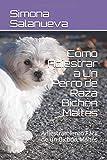 Cómo Adiestrar a Un Perro de Raza Bichón Maltés: Adiestramiento Fácil de un Bichón Maltés