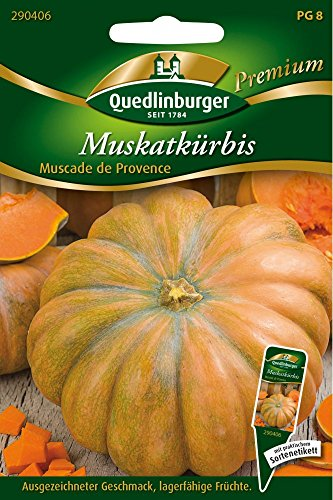 Muskatkürbis Muscade de Provence von Quedlinburger Saatgut