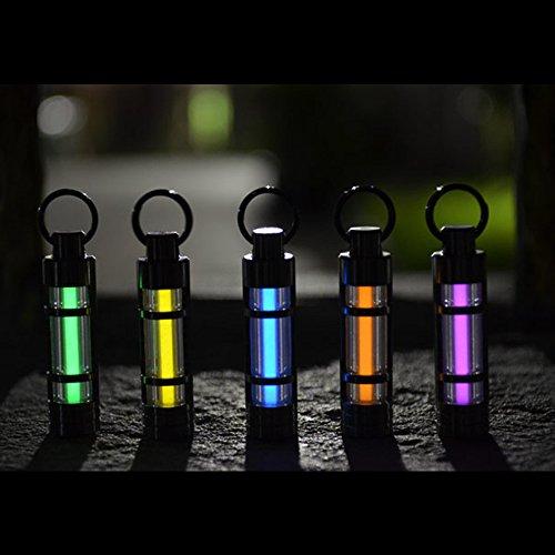 Eastlion Self Illuminating Schlüsselanhänger Key Ring Notleuchte Beleuchtung kontinuierlich für 25 Jahre, Grün