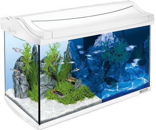 Tetra AquaArt LED Aquarium-Komplett-Set (inklusive LED-Beleuchtung, Tag- und Nachtlichtschaltung, EasyCrystal Innenfilter und Aquarienheizer, ideal für Zierfische) 60 Liter weiß