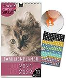 Familienplaner 18 Monate: Jul 21-Dez 22   KATZEN   5 Spalten   Wandkalender: 23x43cm   Familienkalender + 228 Sticker, Ferien 21/22, Monatskalender, Jahresplaner, Tiere, Cats, süß, niedlich, Fotos