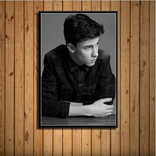 baiyinlongshop Shawn Mendes Pop Music Singer Star Fashion Handsome Art Painting Canvas Poster Wall Home Decor No Frame 50X70Cm C