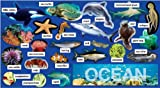 Ocean Plants & Animals Mini Bulletin Board (TF8078)