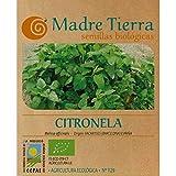 Madre Tierra- Semillas de Citronela ( Melissa Officinalis) Origen Vacarisses España - Ideal para tu Huerta - Aprox. 1 Gr
