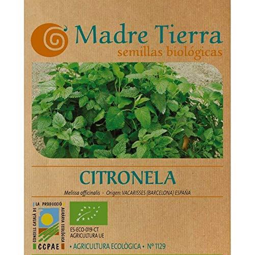 Madre Tierra- Semillas de Citronela ( Melissa Officinalis) Origen Vacarisses España...