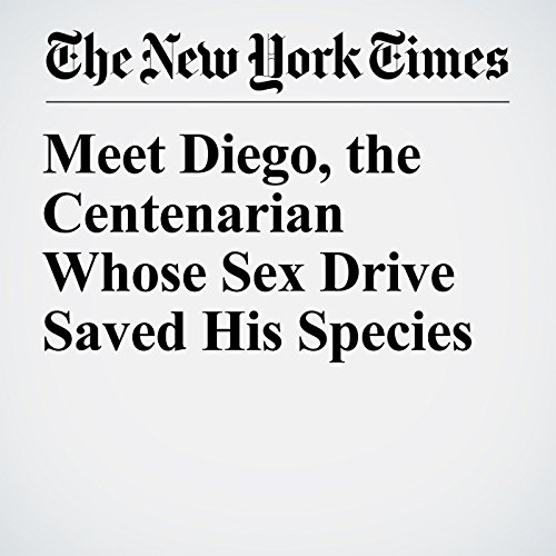 Meet Diego, the Centenarian Whose Sex Drive Saved His Species copertina