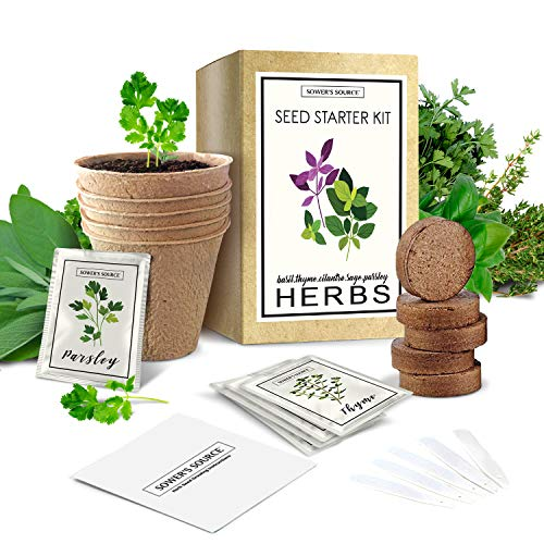 Indoor Herb Garden Starter Kit - Non GMO - Seed Packets, Pots, Markers, Soil Mix - Fresh Basil, Cilantro, Parsley, Sage, Thyme