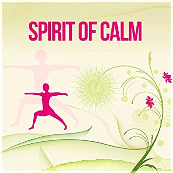 Spirit of Calm – New Age Music for Yoga, Meditation, Mantra, Calmness Day at Home, Sounds of Nature to Reduce Stress and Relax