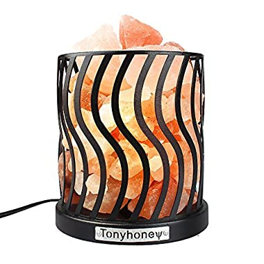 Salt Lamp Natural Himalayan Pink Salt Rock Lamps with Anti-Slid Rubber Base, Iron Metal Art Salt Lamp, Dimmer Switch, UL-Listed Cord, 2 Bulbs, for CHRISTMAS GIFTS & HOME DECORATION (Black Iron Wave)