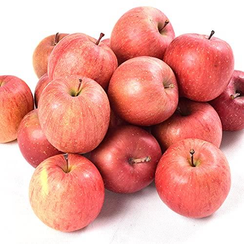 国華園 食品 青森産 ちびふじ 10kg 1組 りんご
