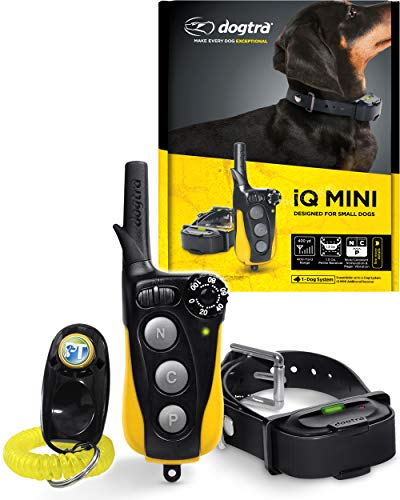 Dogtra IQ Mini Small Remote Dog Training System - 400 Yard Range Collar, Rechargeable Remote Trainer, Waterproof, Static, Vibration Pager Training with PetsTEK Dog Training Clicker