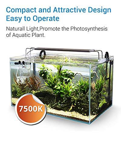 NICREW BrightLED Aquarium Light, Full Spectrum Fish Tank Light for Planted Tanks, 20 to 24-inch, 18-Watt, 1200 LM, 7500K