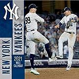MLB New York Yankees Mini