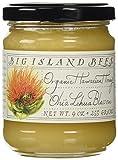 Organic Ohia Lehua Blossom Raw Hawaiian Honey, Single Floral Variety by Big Island Bees (9 oz Glass Jar)