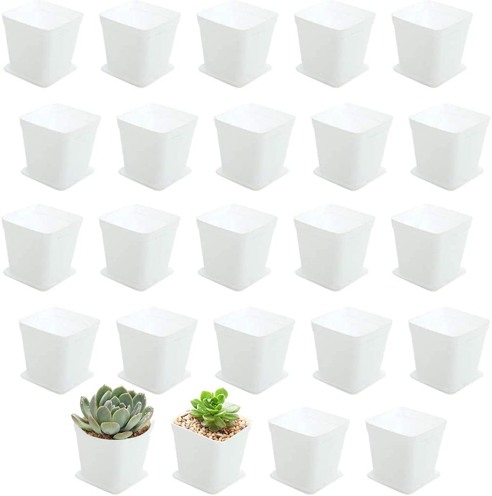 3inch White Square Plastic Plant Pots with Saucer,24 Pcs Plastic Flower Pots for Plants,Plant Pots with Drainage Hole for Home,Company,Office and Garden(White)