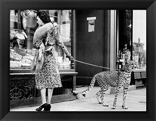 cheetah prints pictures - 7