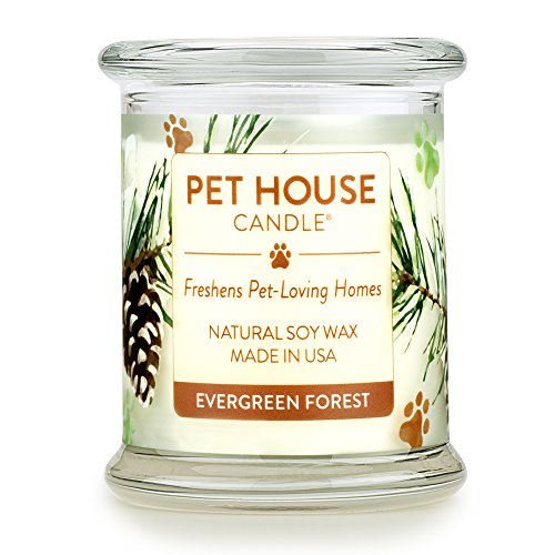 One Fur All 100% Natural Soy Wax Candle, 20 Fragrances - Pet Odor Eliminator, Up to 60 Hours Burn Time, Non-Toxic, Eco-Friendly Reusable Glass Jar Scented Candles – Pet House Candle, Evergreen Forest
