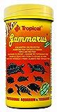 Tropical GAMMARUS - Gamba seca de agua dulce para tortugas, tortugas y peces ornamentales grandes - lata 1000 ml/120 g