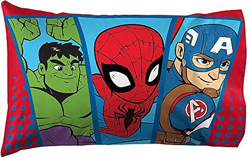 GD-SJK Amacigana Marvel DC The Avengers Batman Spiderman - Federa per cuscino per divano e camera da letto (Spiderman)