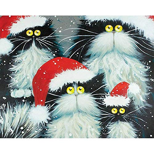DIY Painting Digital Kit Malpinsel Malerei Ölfarbe (40Cmx50Cm / 16 Zoll x 20 Zoll ohne Rahmen) -Katze mit Weihnachtsmütze