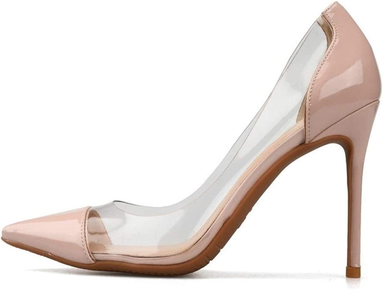MUJUN Mode Sommer Elegante D'orsay Pumps Für Frauen, Spitz Spitz High Stiletto Heels Seite Transparenz Kleid Party Ball Prom Schuhe Für Damen (Farbe   Nude 10 cm Heel, Größe   42 EU)  weltweit versandkostenfrei