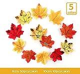Sweelov 250 Stück künstliche Ahornblatt Herbstlaub Blätter Ahorn Laub Simulation Ahornblatt Für Halloween Erntedankfest Weihnachten Unterlage Wandbild, 5 Farben - 3