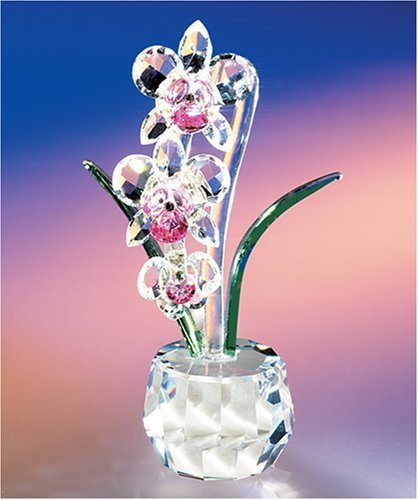 CRYSTAL WORLD Angel Heart Orchid