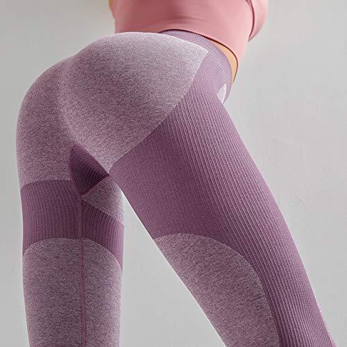 QingYu - Fitness-Dreiviertel-Hosen für Mädchen in Purple, Größe S