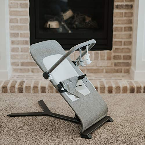 Product Image of the Baby Delight Go With Me