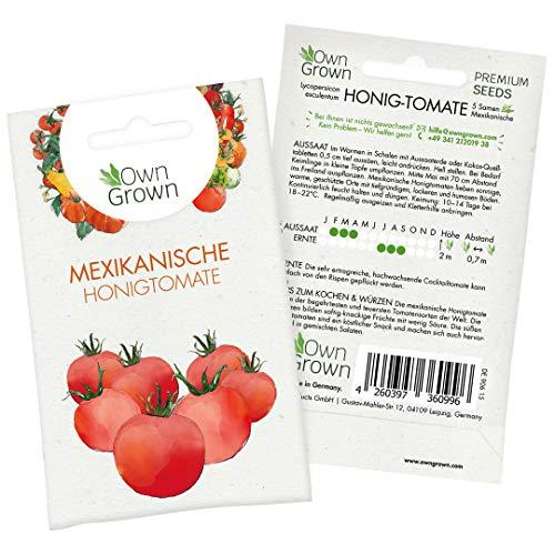 Tomaten Samen Mexikanische Honigtomate: Premium Cocktailtomaten Samen zum einfachen Anbau von Tomatenpflanzen für Balkon und Garten – 5 Mexikanische Honigtomate Samen – Gemüse Samen von OwnGrown