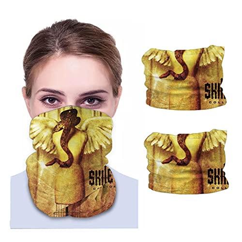 Haiyaner Skillet Collide Adult Variety Microfiber Neck Warmer,Neck Gaiter,Balaclava Face Mask (2 Pcs) Black