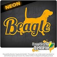 ビーグルの名前 - 犬 Beagle with Name - Dog 17cm x 10cm 15色 - ネオン+クロム! ステッカービニールオートバイ