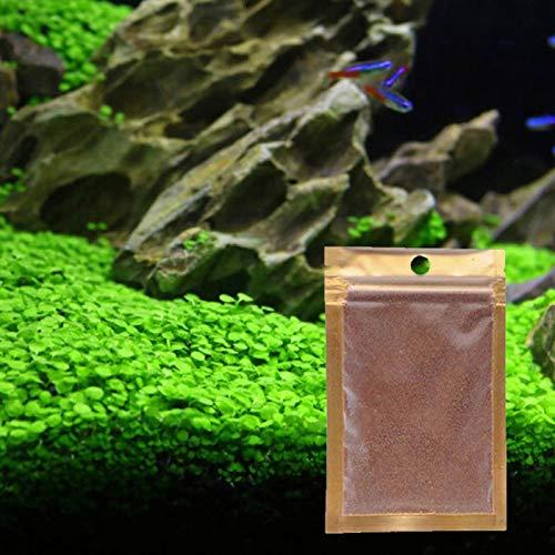CULER Aquarienpflanzen Samen Im Wasser Wasser Grassamen Für Aquarium-Rasen-Garten Decor