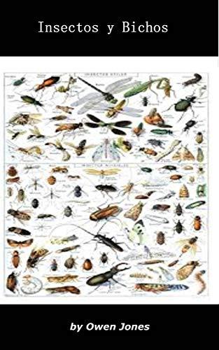 Insectos y bichos (Como hacer... nº 65)