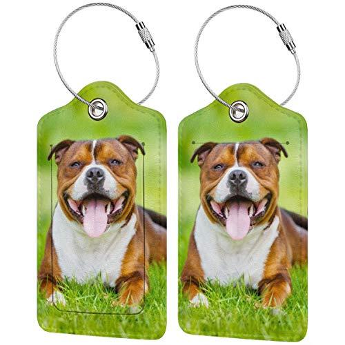 English Staffordshire Bull Terrier Dog personalizado cuero maleta de lujo etiqueta Set...