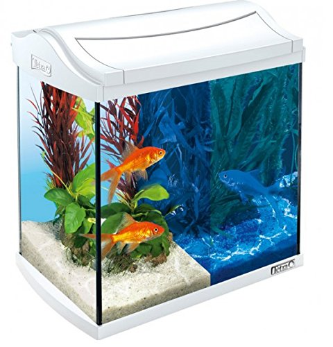 Tetra AquaArt Aquarium LED Goldfish-30L weiß