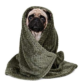 Lucarres Couverture en flanelle pour chien et chat Super doux et chaud pour lit de voiture Lavable (vert)