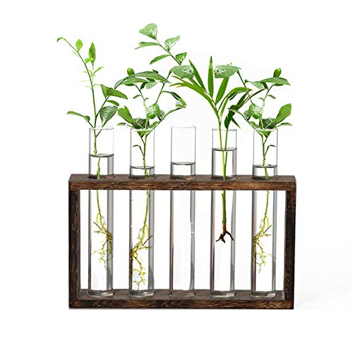 HUABEI Wooden Stand with Test Tube Rack Desktop Hydroponics...