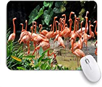 PATINISAマウスパッド ピンクワイルドカリビアンフラミンゴ動物野生動物自然動物園海岸湖生活風景ジャングルアフリカ ゲーミング オフィ良い 滑り止めゴム底 ゲーミングなど適用 マウス 用ノートブックコンピュータ