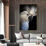 TYLPK Abstrait Blanc Perroquet Toile Peinture Imprimer Affiche Animale Décoration de La Maison Salon Art Mural A5 60x90 cm