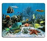 Not Applicable Alfombrilla de ratón Alfombrilla de Goma Natural Jardín de Coral con Estrellas de mar y Peces Tropicales Coloridos Imagen del mar Caribe 14381555