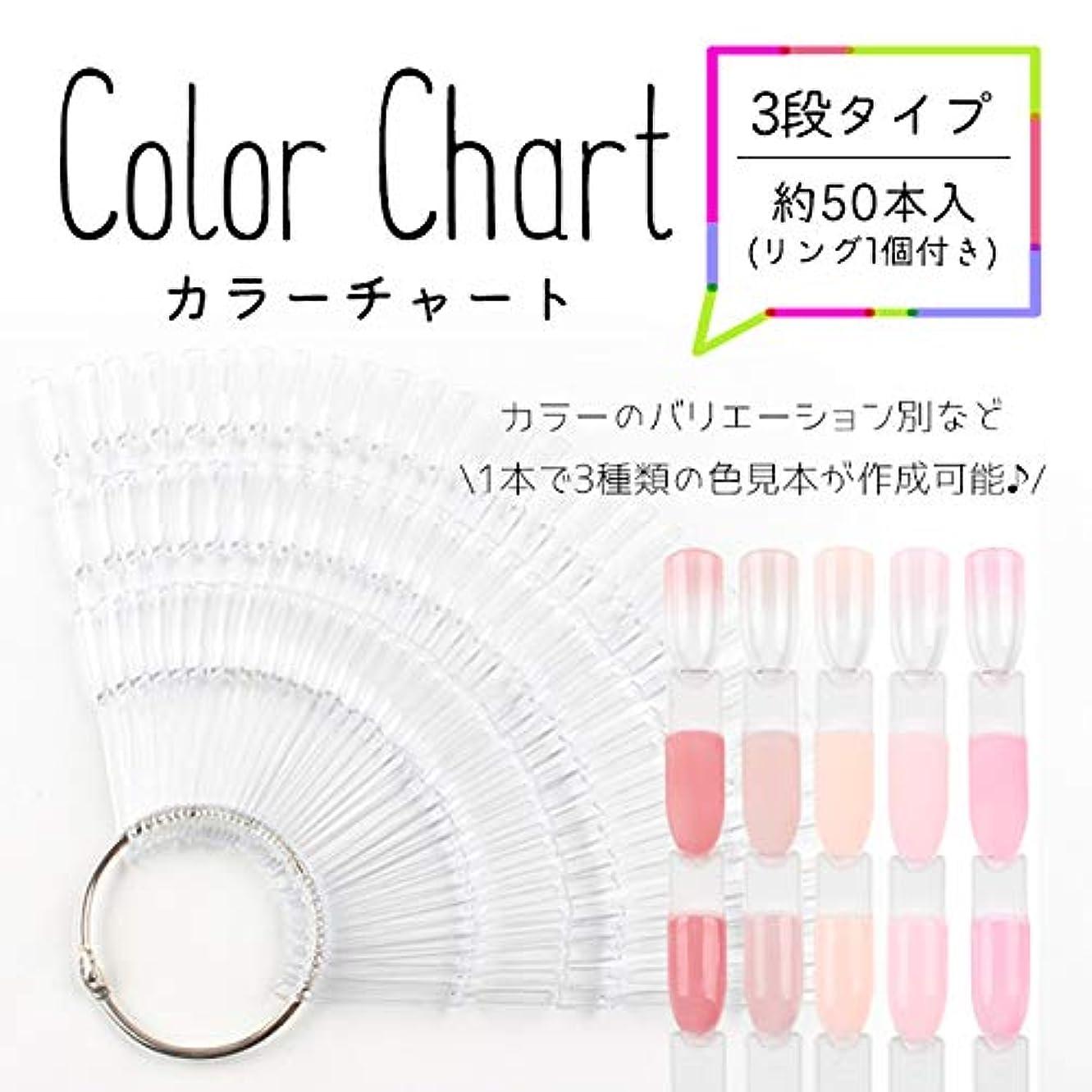 お酢最少腸3段タイプ カラーチャート (クリア) ネイルアート