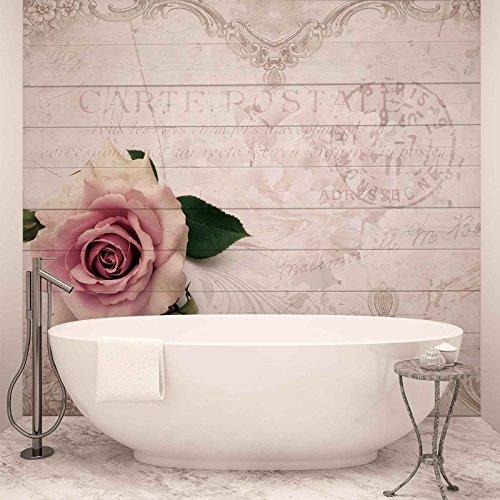 Pinke Rose - Forwall - Fototapete - Tapete - Fotomural - Mural Wandbild - (3346WM) - XL - 254cm x 184cm - Papier (KEIN VLIES) - 2 Pieces