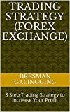 FOREX TRADING STRATEGY: 3 Step: Trading Strategy to Increase Your Profit (Trading Forex Book 1) (English Edition)