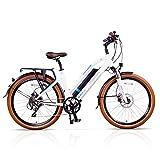 Magnum Metro Low Step Premium Electric Hybrid Bike - 500W Motor, Large Capacity 48V13A Lithium Battery – Handlebar Display – eBike for Adults