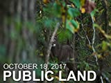 October 18 - Public Land: Ground Encounter With a Decoy