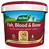 Westland Fish, Blood and Bone All Purpose Plant Food, 10 kg