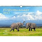 Calendario DIN A3 para 2021 elefantes y 1 tarjeta de regalo – María mágica